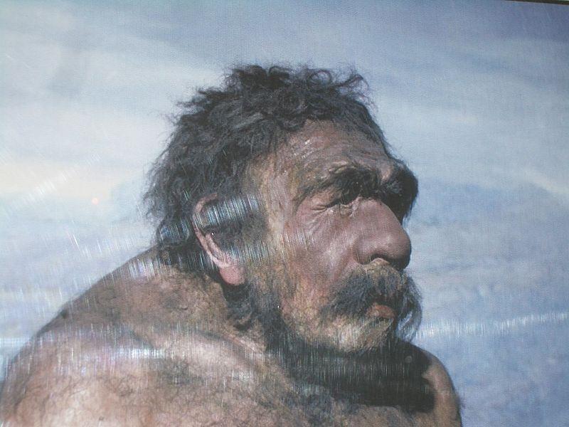 Неандерталец из Мустье. Реконструкция анатома Сольгера, 1910 год.