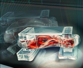 Электрический сигнал позволяет управлять движениями биоробота.