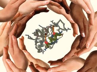 """В проекте """"Протеом человека"""" вКитае задействовано около сорока исследовательских центров иболее двухсот научных сотрудников."""