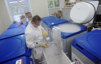 Ранее специалисты уже выращивали из стволовых клеток легочную ткань, однако получить клетки альвеол до сих пор неудавалось.
