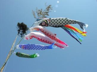 """Кодомо-но хи— японский национальный праздник; отмечается 5 мая. Вдревности был известен как """"Танго-но сэкку"""", """"первый день лошади"""". До Второй Мировой войны отмечался как День мальчиков (День девочек праздновался отдельно— 3 марта). Сейчас считается праздником детей вообще. Вэтот день японские семьи вывешивают перед домом флаги ввиде карпов. Первые два карпа символизируют родителей, остальные— детей."""