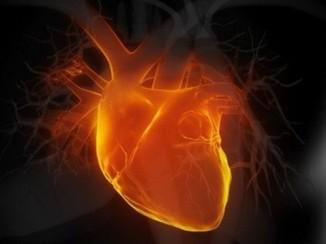 В России уровень смертности населения обоих полов всех возрастов от сердечно-сосудистых заболеваний вшесть раз выше, чем во Франции.