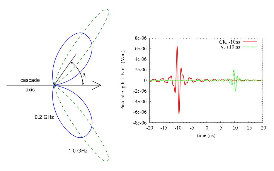 Излучение Аскарьяна от каскада адронных частиц вреголите. Излучение направлено вперёд вдоль оси каскада ввиде полого конуса под углом θ<sub>c</sub>.