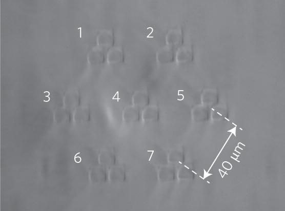 Поперечное сечение оптоволокна