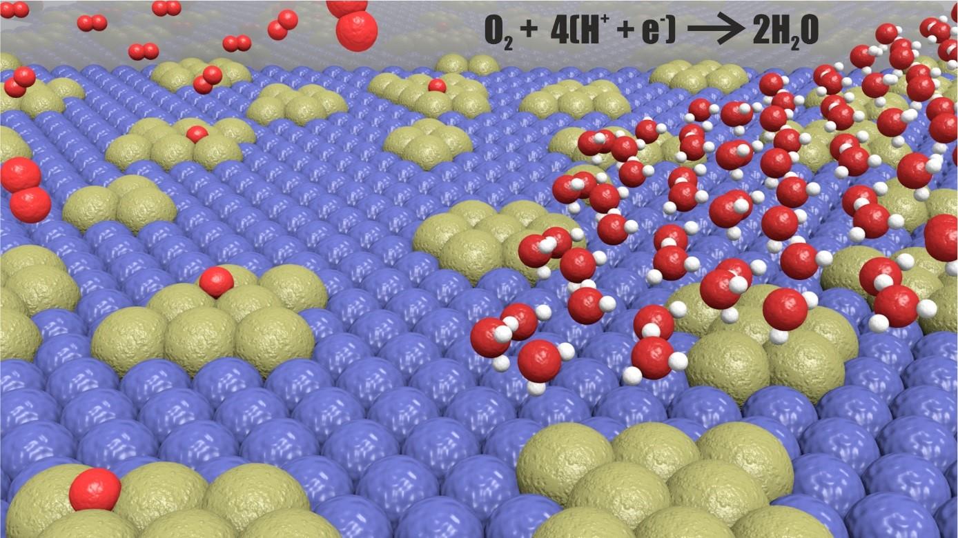 Схема процесса восстановления кислорода сучастием нового сплава. Островки палладия (жёлтые) внедрены ввольфрам (голубой). Красные шары— атомы кислорода, белые— водорода.