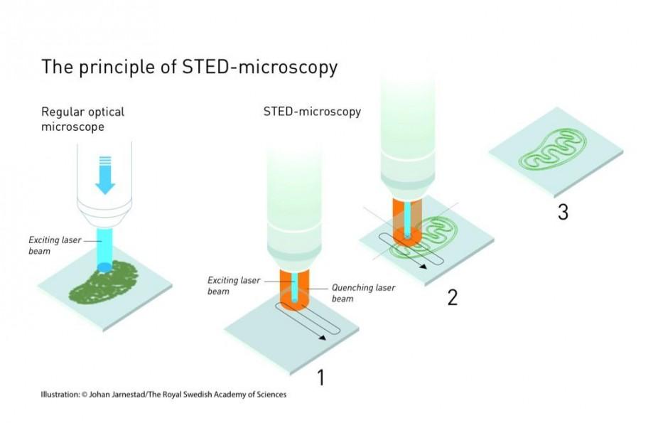 STED-микроскопия
