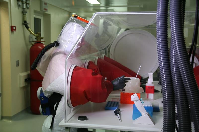 Анализ образцов крови в<i>CIRMF</i>, Габон.