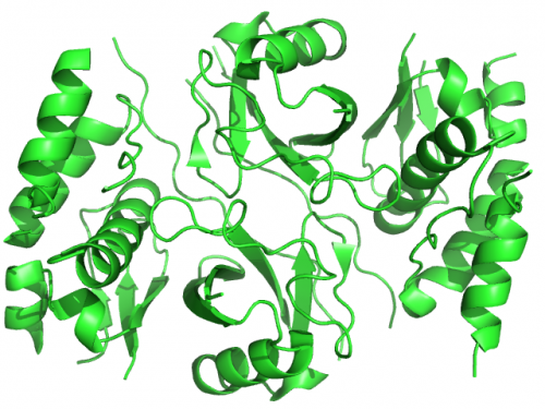 Белок Vif вируса иммунодефицита человека