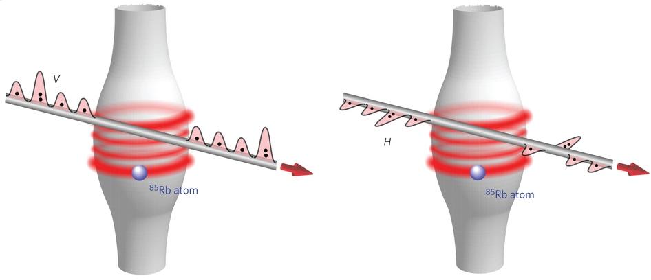 Схема экспериментальной установки. Если падающий свет поляризован вертикально (V), он невзаимодействует сколебаниями резонатора, исвет проходит через резонатор без изменений. Если же свет поляризован горизонтально (H), то вслучае одновременного поступления двух фотонов они выходят из резонатора со сдвигом фазы навеличину π.