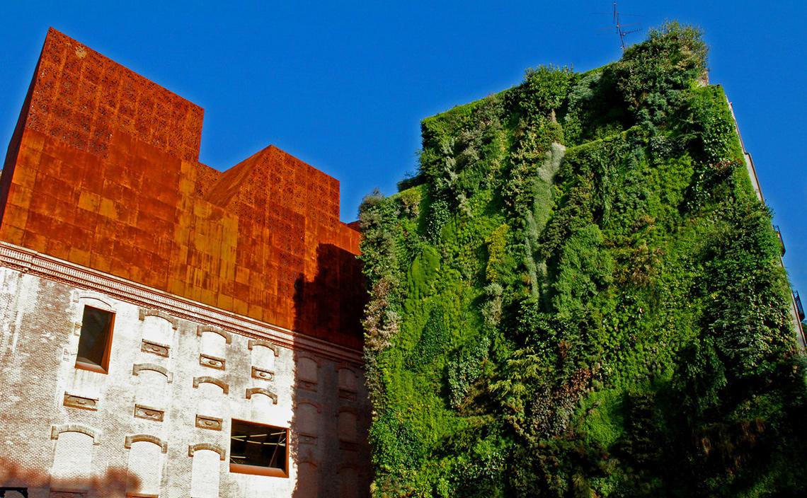Вертикальный сад возле музея CaixaForum вМадриде.