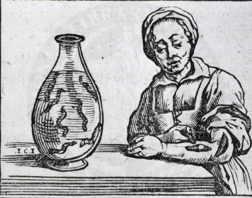 Применение медицинских пиявок. Гравюра из медицинской книги 1639 года.