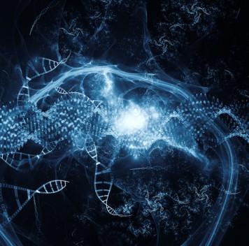 Горизонтальный перенос генов уживотных
