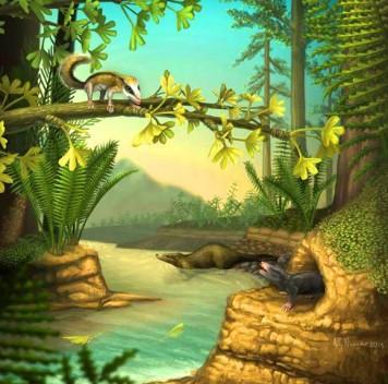 Ранние млекопитающие во времена динозавров: находки вКитае