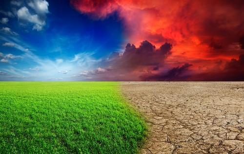 Устойчивое развитие пикирующего человечества