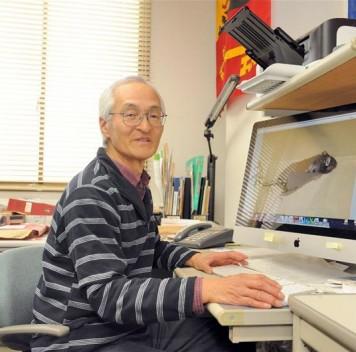 Японские учёные «омолодили» культуру клеток человека