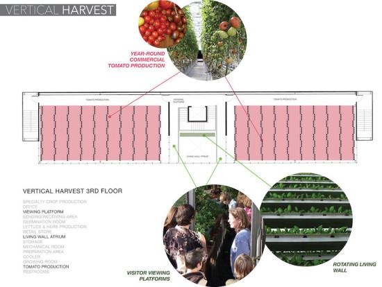 План третьего  этажа вертикальной фермы вВайоминге.