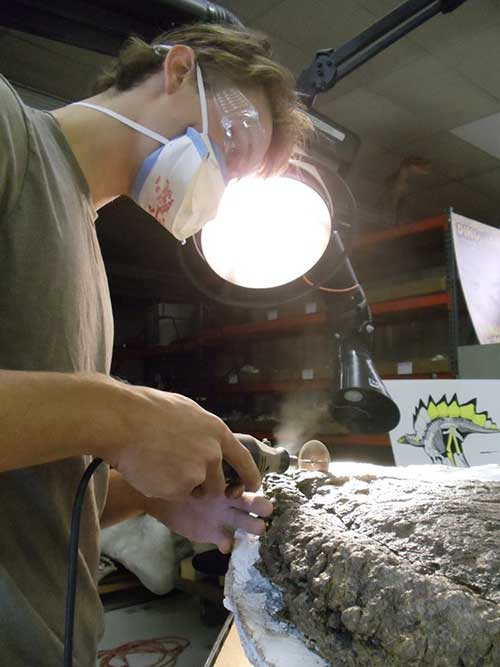 Эван Заитта за работой по подготовке образцов костных пластин.