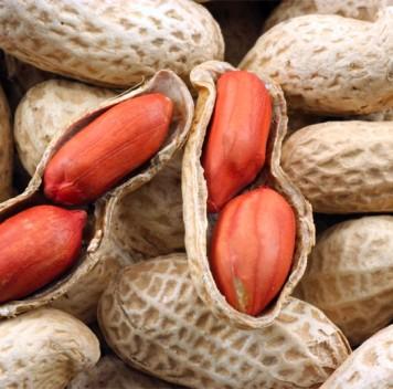 Орехи иарахис снижают риск смерти от ряда заболеваний