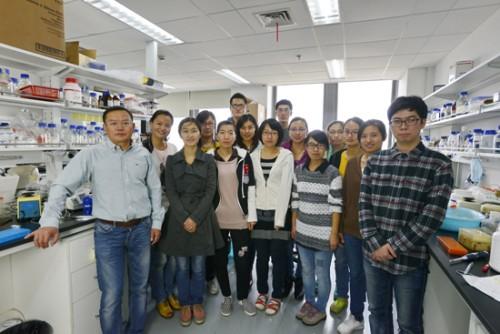 Чэнь Янь (крайний слева), ведущий автор исследования иего команда.