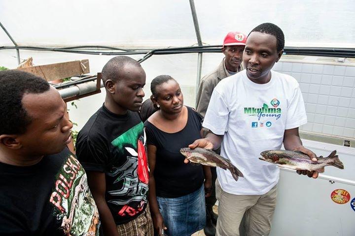 Даниэль Кимани показывает молодым фермерам выращенную ваквапонике рыбу