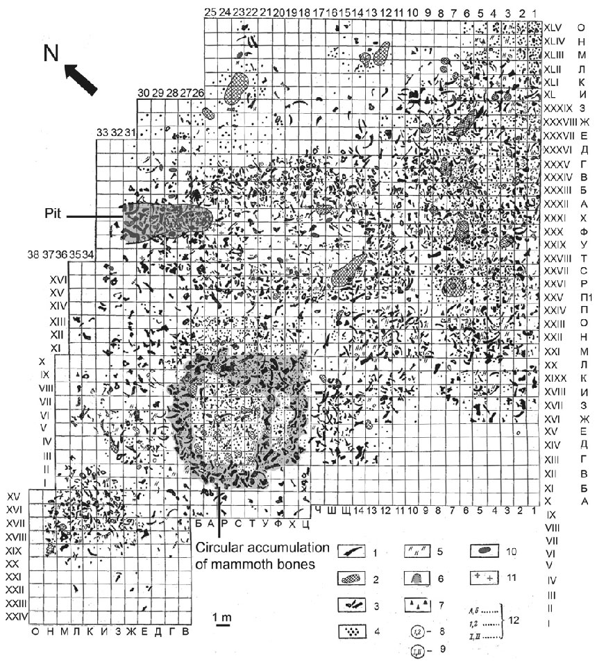 План стоянки Молодова 1 (слой 4) 1. Бивни мамонтов; 2. Очаги; 3. Кости; 4. Кремневое сырье; 5. Нуклеус; 6. «Яма»; 7. Каменные орудия; 10. Зубы мамонта; 11. Непищевые отметки накрупных костях мамонта. Источник: Laetitia Demay, Stephane Pean, Marylene Patou-Mathis. Mammoths used as food and building resources by Neanderthals: Zooarchaeological study applied to layer 4, Molodova I (Ukraine) // Quaternary International 276-277 (2012) 215.