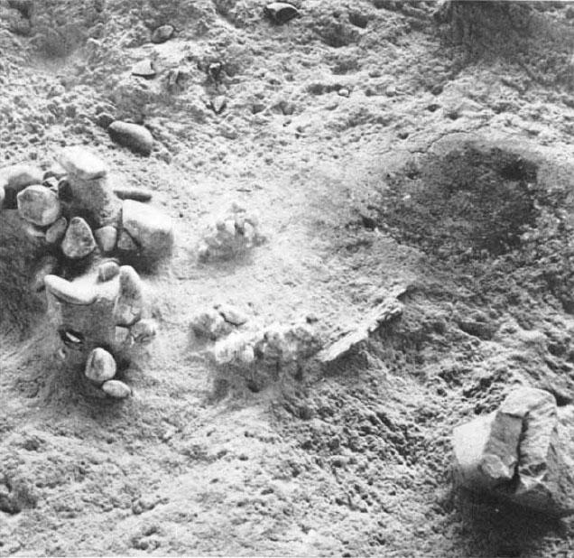 Терра-Амата. Справа— пятно от кострища, слева— вероятно, остатки ветрового заслона из камней. Источник: Lumley H. de. A Paleolithic Camp at Nice // Scientific American 220 (1969), p. 47.