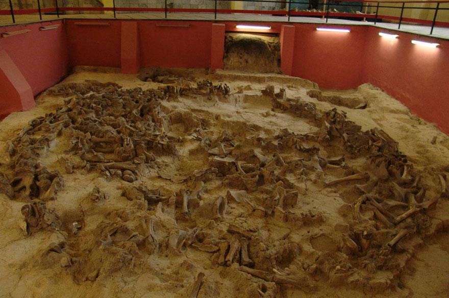 Остатки жилища из костей мамонта. Костёнки.