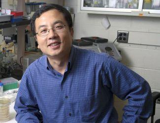 Пэйхуа Цзян