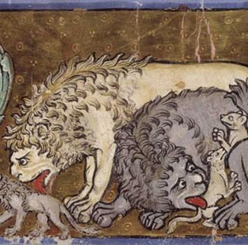 Популяции львов вАфрике неуклонно сокращаются