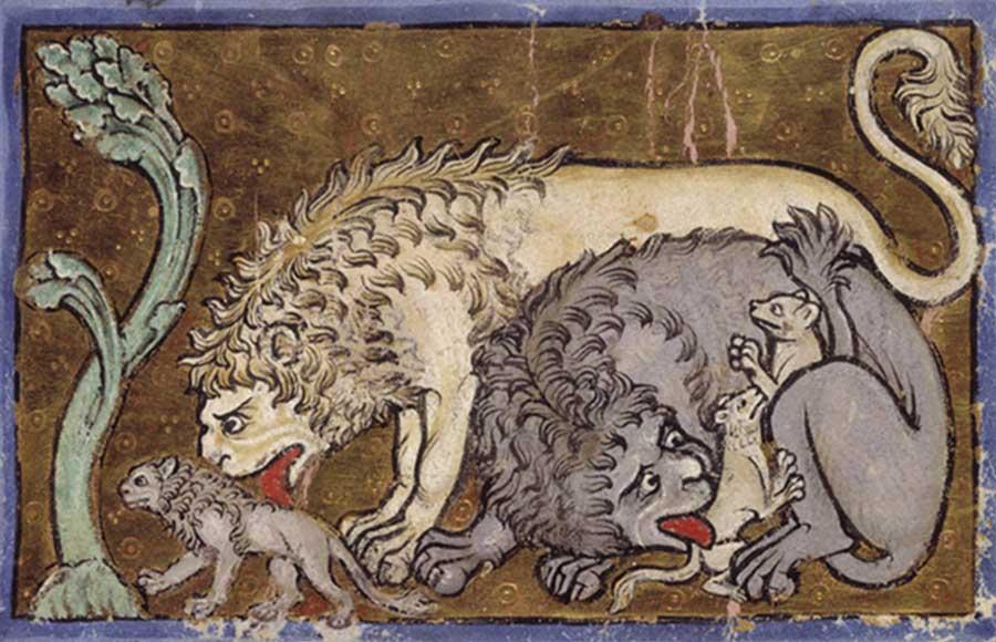 Исторический ареал льва был значительно шире современного: ещё враннем Средневековье лев встречался навсей территории Африки, кроме пустынь итропических лесов, также его можно было увидеть наБлижнем Востоке, вИране идаже вряде мест южной Европы (к примеру, он обитал начасти территории современного юга России, поднимаясь примерно до 45-й северной параллели).