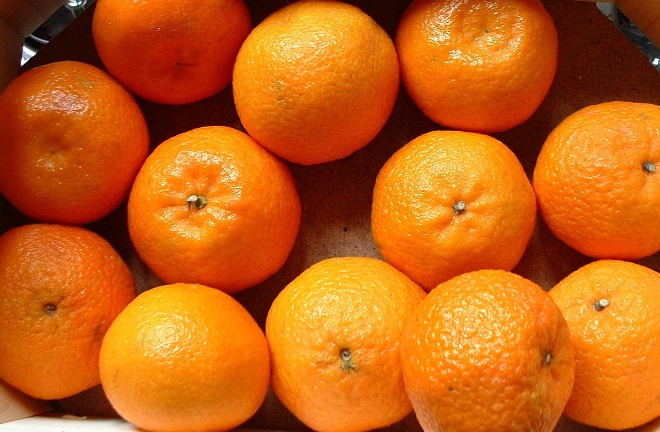 Клементин (<i>Citrus clementina</i>)— гибрид мандарина иапельсина-королька из подвида померанцев, созданный в1902 году французским священником иселекционером братом Клеманом Родье (Clément Rodier, 1839—1904). Плоды по форме напоминают мандарин, но более сладкие.