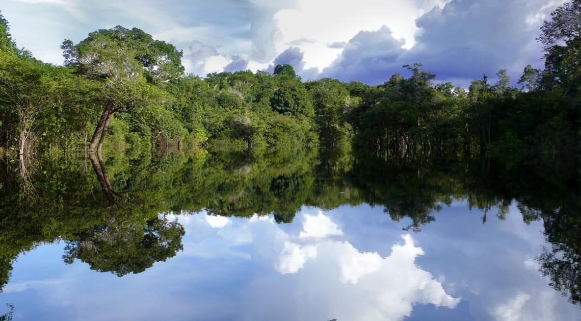 Амазонка— самая полноводная река вмире