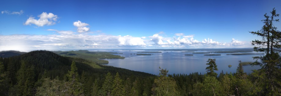 Национальный парк Коли, озеро Пиелинен