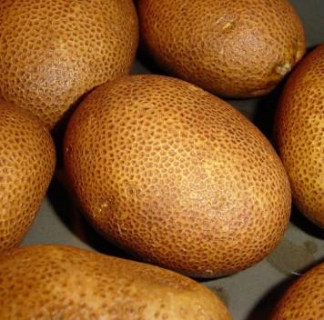 Акриламид вжареной картошке: невсе сорта картофеля одинаково опасны