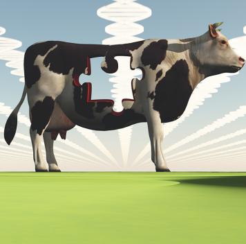 Н.К.Янковский о«вреде» ГМО ио«пользе» натуральных продуктов. Беседы огенетике