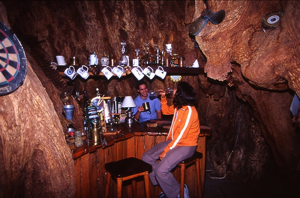 Интерьер бара встволе баобаба