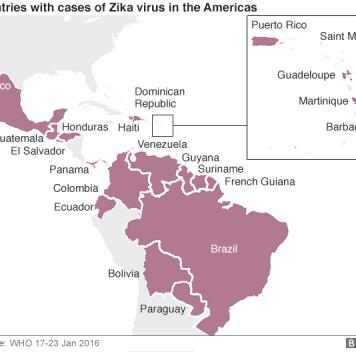 Вирус Зика распространится по всей Америке