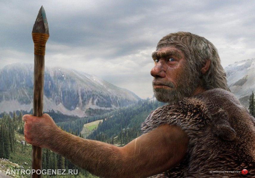 "<i>Homo neanderthalensis</i>. Реконструкция <a rel=""nofollow"" href=""http://other-worlds.ucoz.ru/"" target=""_blank"">Романа Евсеева</a> для <a rel=""nofollow"" href=""http://antropogenez.ru/"" target=""_blank"">АНТРОПОГЕНЕЗ.РУ</a>."