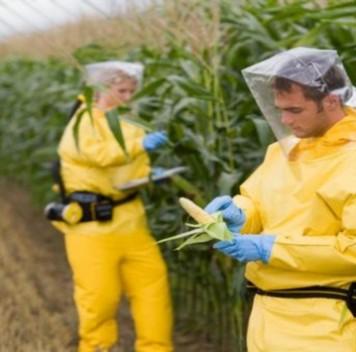 Запрет ГМО приведёт квыбросу огромных количеств углекислого газа