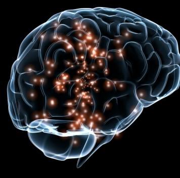 Новое исследование проливает свет напроцесс забывания