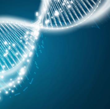 Противовирусные белки могли играть большую роль вэволюции человека