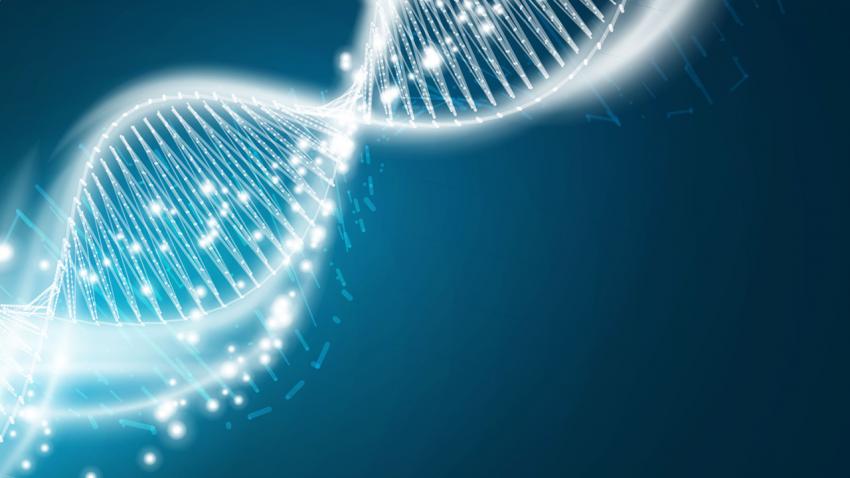"""Некоторые антивирусные белки могли менять нашу <abbr lang=""""ru"""" title=""""Дезоксирибонуклеиновая кислота"""">ДНК</abbr>."""