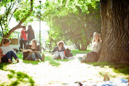 Проведите воскресенье впарке, слушая лекции оНиколе Тесле иАльберте Эйнштейне.