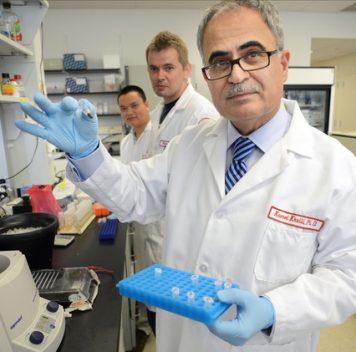 Новая терапия наоснове CRISPR/Cas9 удаляет гены ВИЧ из генома живых организмов