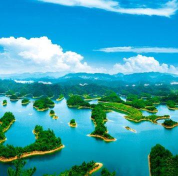 Возведение плотин приводит кснижению биоразнообразия