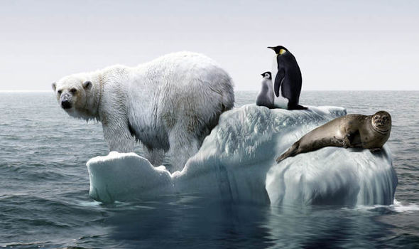 a dangerous threat to antarctica essay Essay on pollution prompt the fish and living environment of natural ecosystems are contaminated by dangerous essay on pollution prompt expository essay.
