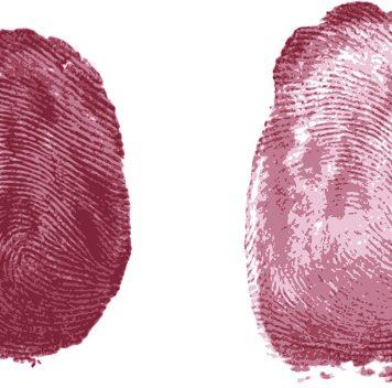 Комиссия РАН по борьбе слженаукой выступает против гадания по отпечаткам пальцев