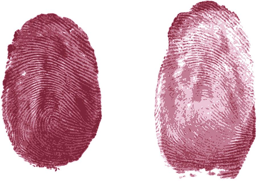 Никакой генетический или профориентационный анализ по отпечаткам пальцев— невозможен. Всякий, кто утверждает обратное,— шарлатан.