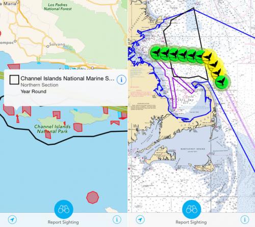 Снимки экрана приложения Whale Alert