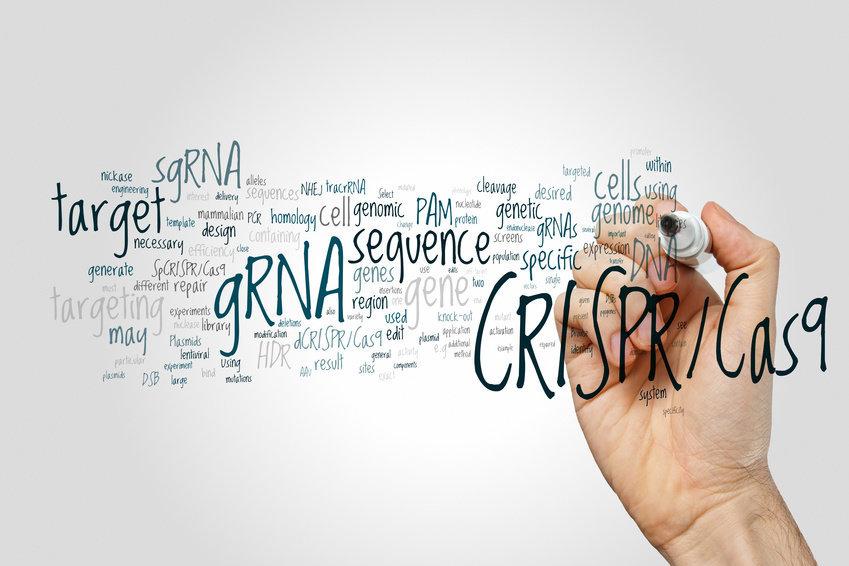 """При редактировании <abbr lang=""""ru"""" title=""""Дезоксирибонуклеиновая кислота"""">ДНК</abbr> вгеном клетки вносятся постоянные изменения. Основанный насистеме CRISPR подход, при котором редактируется РНК, позволит исследователям внести временные изменения, сила которых может быть скорректирована. Метод обладает большей специфичностью ифункциональностью, чем существующие методы РНК-интерференции (RNAi)."""